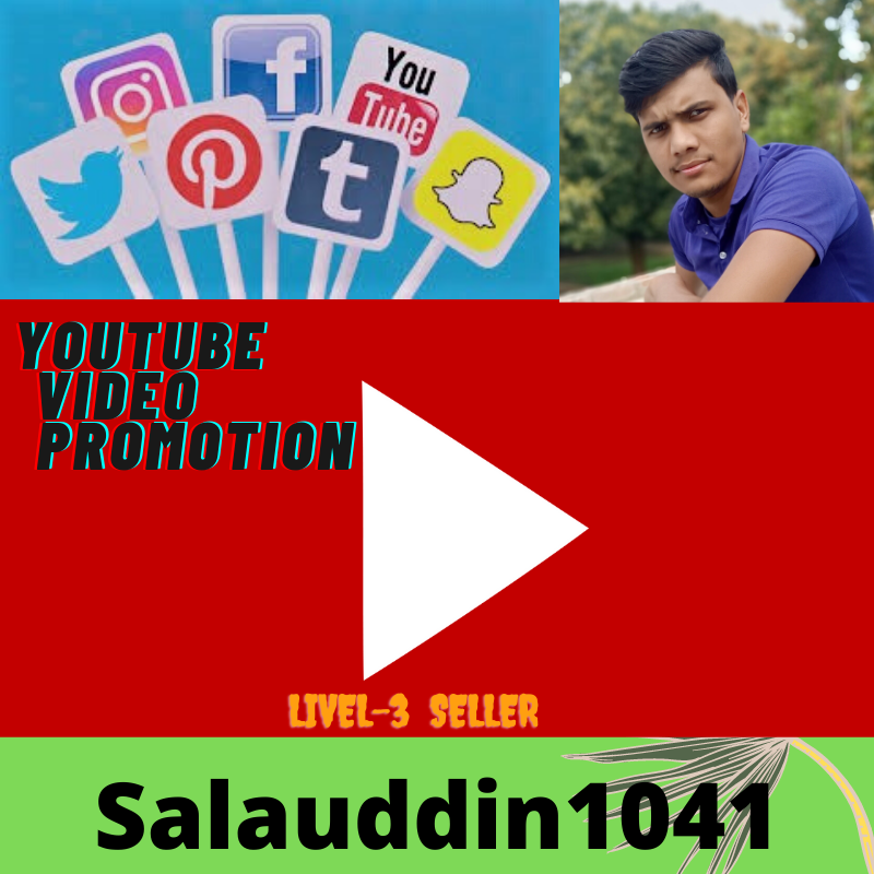 High quality Youtube video promotion available