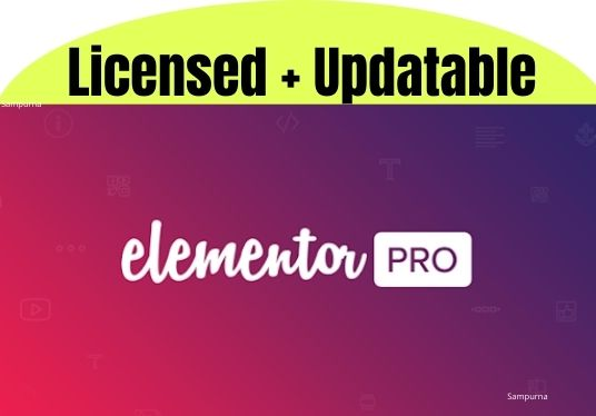 I will install and activate elementor pro