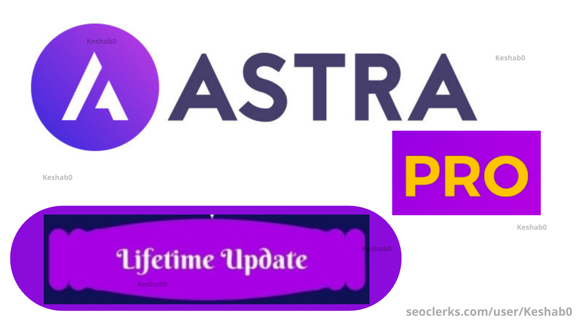Install and activate astra pro agency bundle on your website
