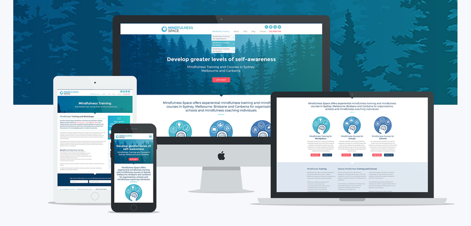 I Will Design and Develop a fully responsive website