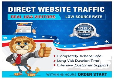 Targeted Real Human Visitors or Traffic to your Website Google Friendly