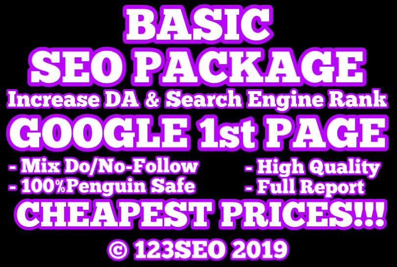 GOOGLE 1st PAGE | BASIC SEO PACKAGE