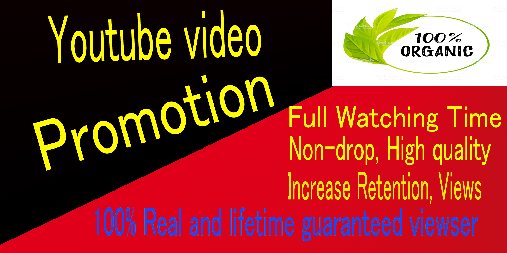 Organic Instant,HQ,Nodrop,Youtube video Music promotion Seo,social Media Rank,monetization marketig