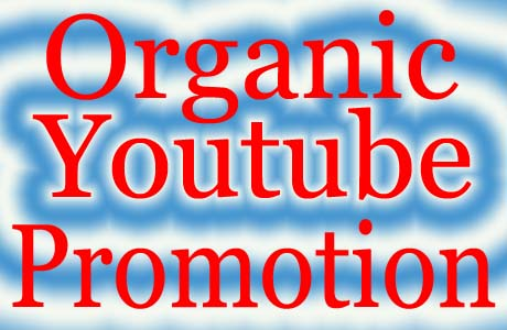 Organic YouTube Promotion USA profile Social Media marketing