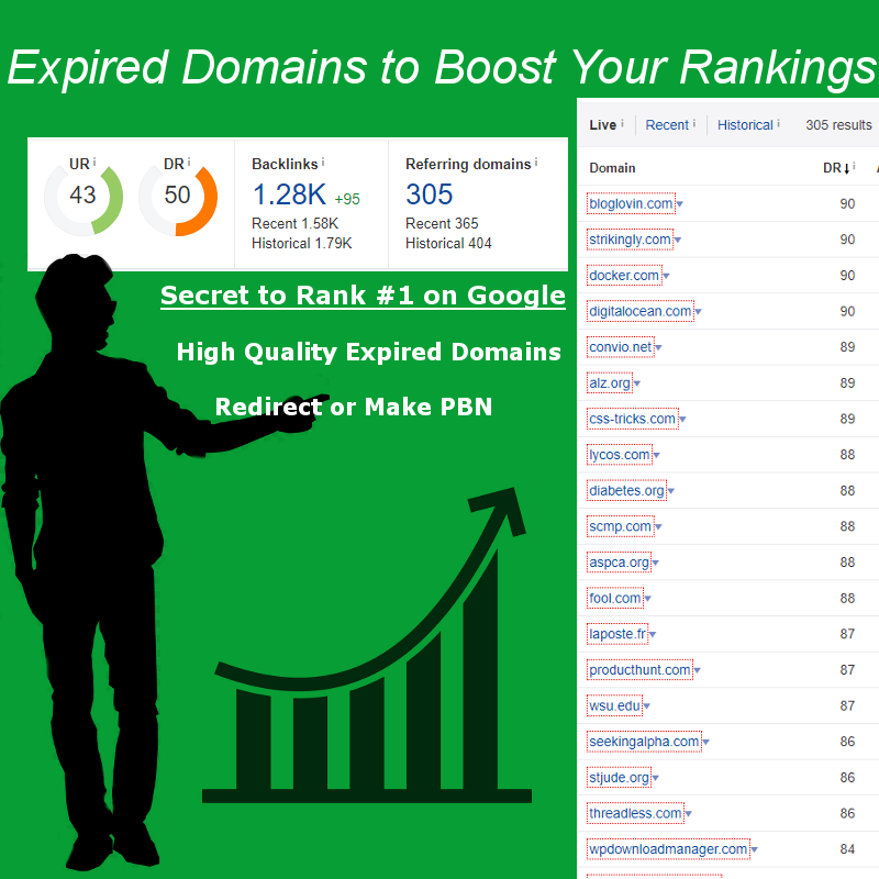 Get Backlink From Worlds Top Websites via 301 Redirect Expired Domain