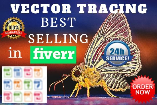 I will design reailstic vector tracing in 24 hours