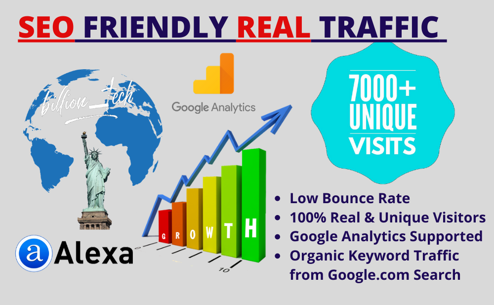 I will send real visitors,  targeted web traffic