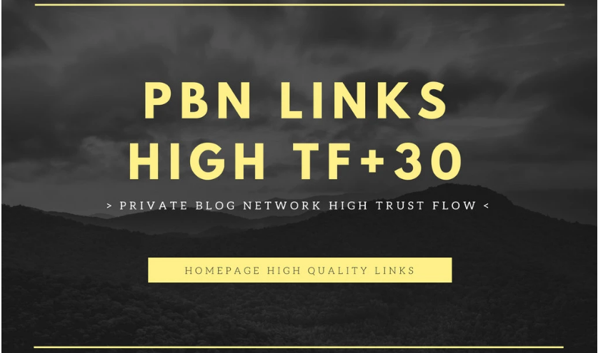 Manual 15 PBN Forum Backlinks - DA 20+ and TF 30+ Hig...
