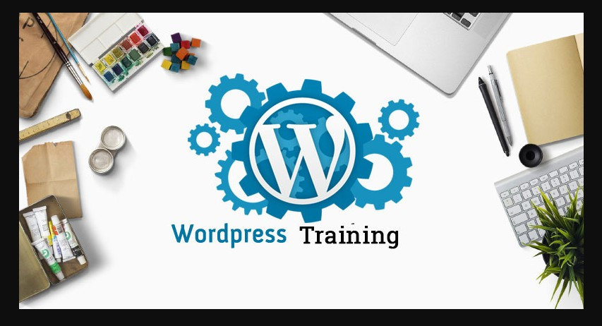 1 hour live course via teamviewer or Google meet - WordPress install,  plugin and content setup