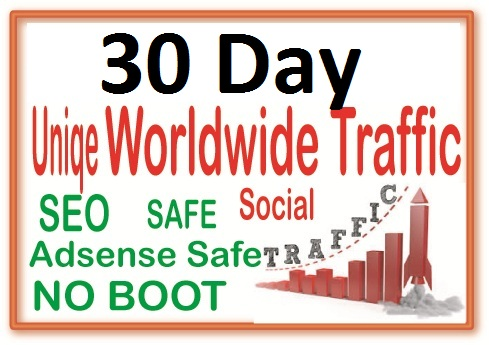 Do 30 Day Targeted Human Traffic from search engine and social media