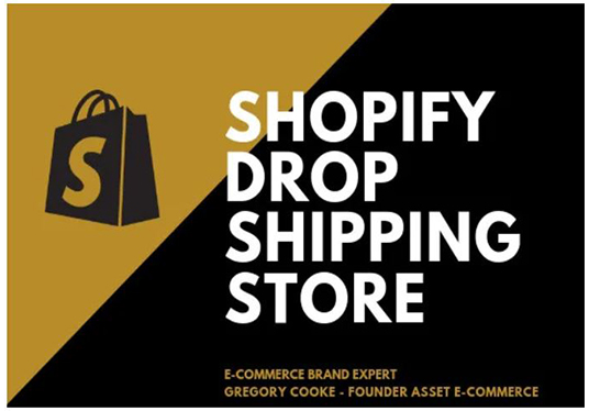 Build You A High Converting Dropshipping Shopify Store