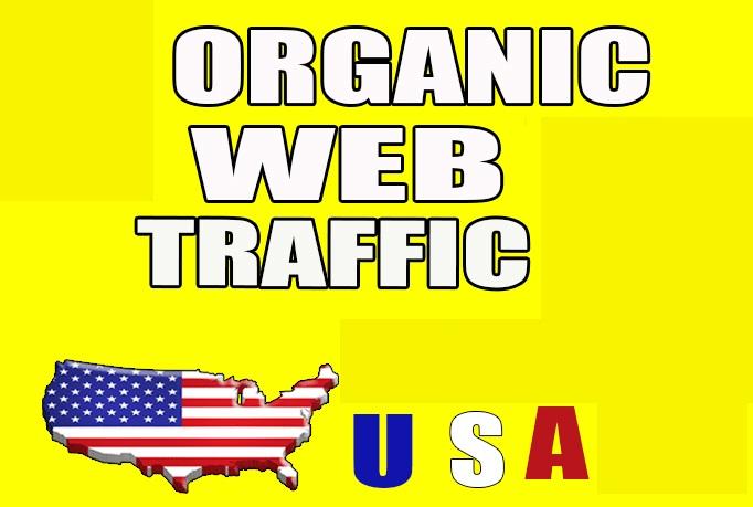 10000 amazing organic Website Traffic for 10 days