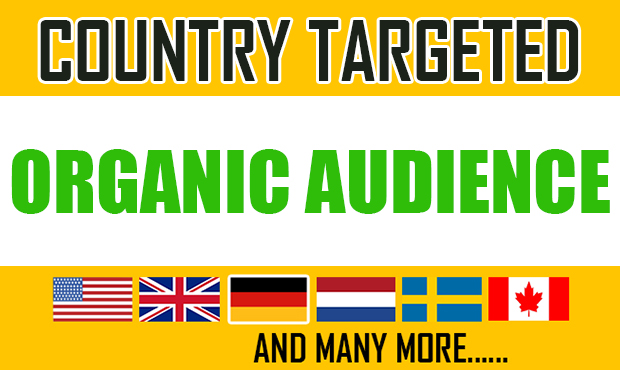 3K Country Targeted audience from USA UK GERMANY CANADA through onsite seo and guest post