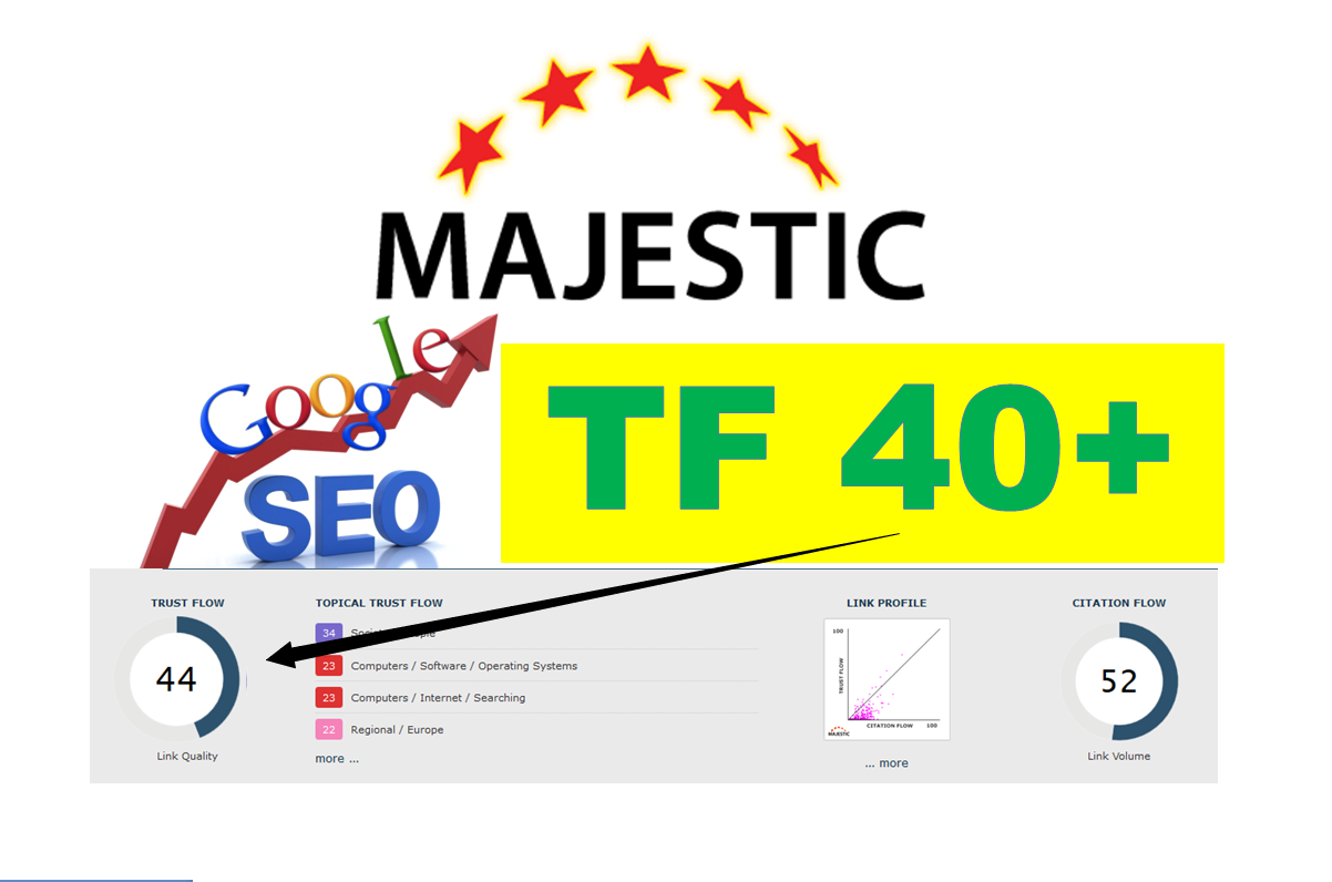 I will create 80 permanent high tf dofollow links,  Majestic Trust Flow Backlinks