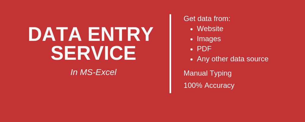 Data Entry in MS-Excel or Google Spreadsheets