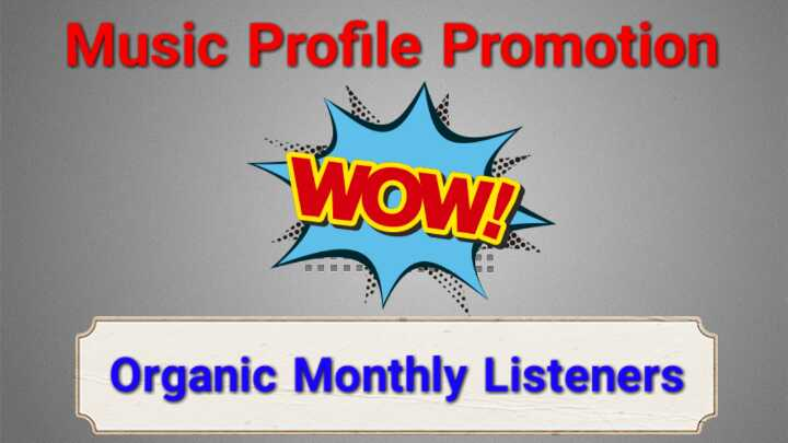 Get Instant High Quality USA Monthly Listeners For Your Music Profile