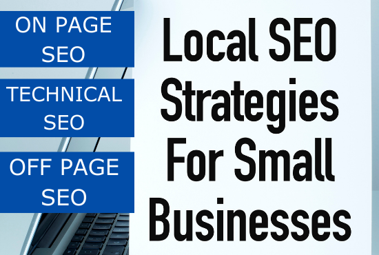 I will deliver fully managed local SEO service for your small Business