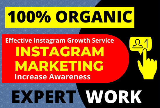 Super fast organic Instagram growth & Instagram Marketing for 10 Day's