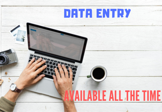 Virtual Assistant For Data Entry, Web Research, Copy Paste ,2 hours!!