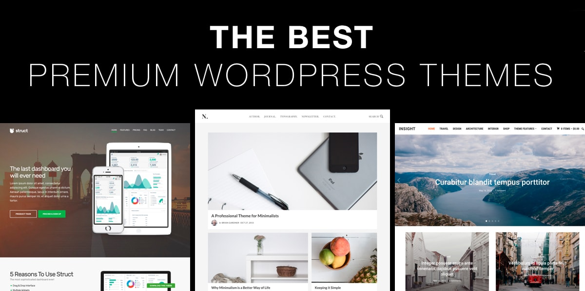I will install wordpress premium theme