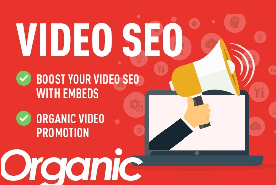 ORGANIC & HIGH QUALITY VIDEO PROMOTION