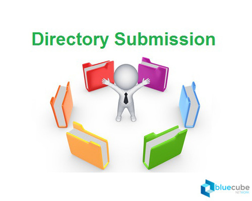 Website Submission in 500 directories