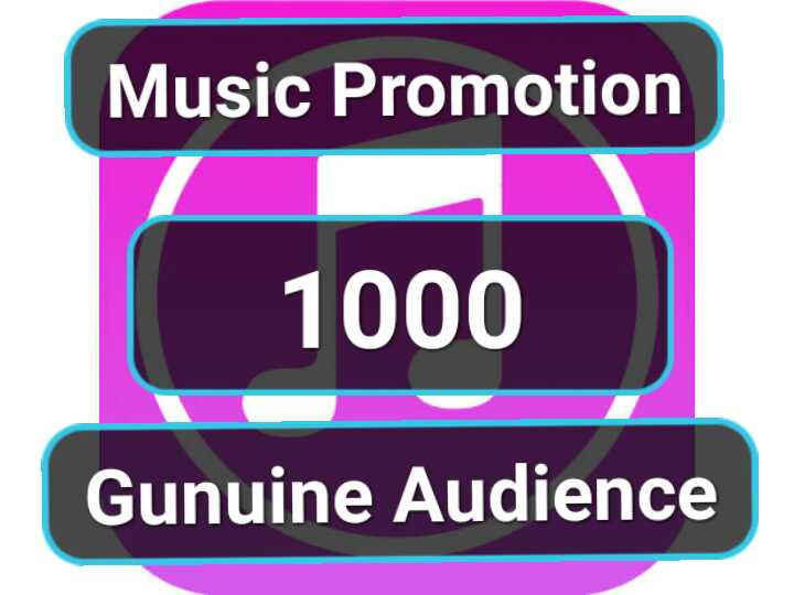 I'll do safe & organic music promotion for you
