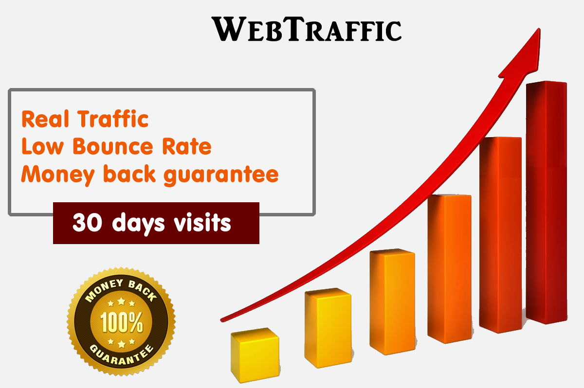 30 Days UNLlMITED Web Traffic Website