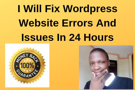 I'll fix wordpress website errors in 24 hours