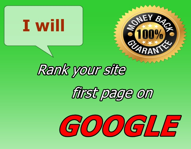 Rank your website in GOOGLE first page , guranteed