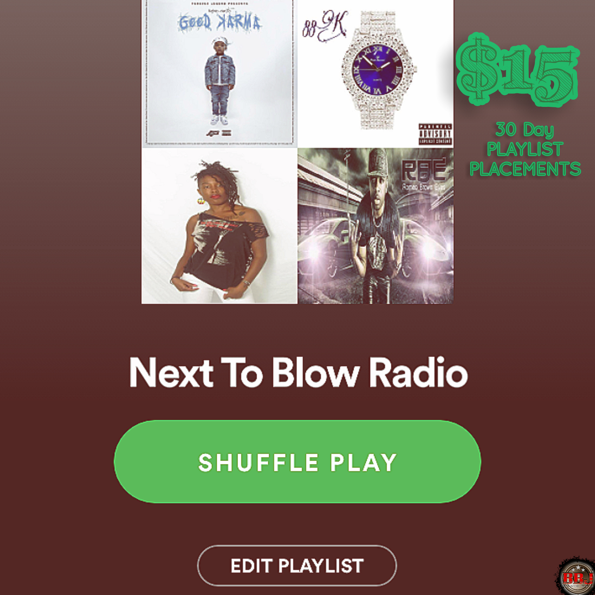 30 Day Playlist Placements add 1 song to active playlist boost streams organically