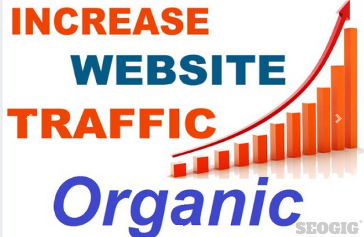 UNLIMITED HUMAN TRAFFIC BY Google 20,000 Traffic To YOUR Website