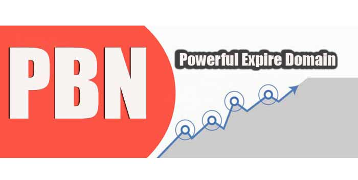 High Authority Expired Domains For Pbn Within 24 Hr