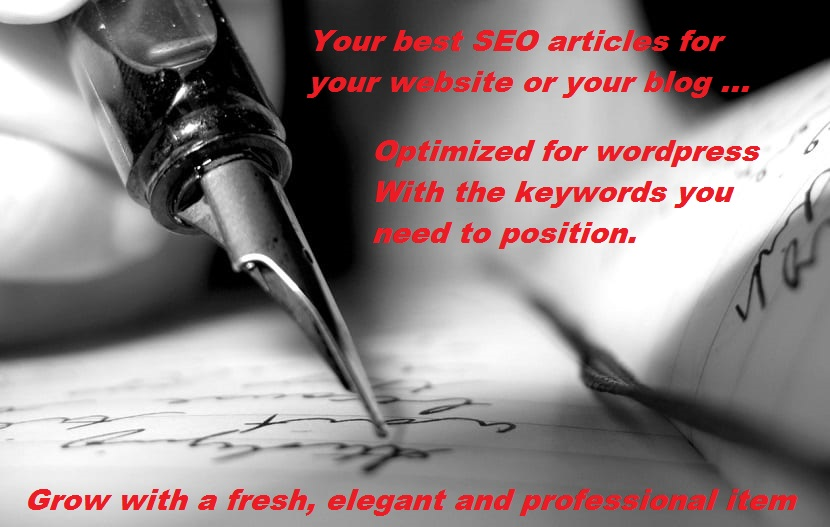 SEO articles for your blog or your website - PACK´ S