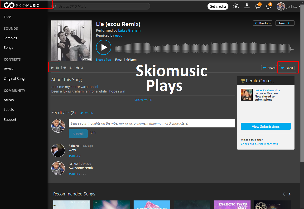 I can provide 1000 skiomusic remix contest views