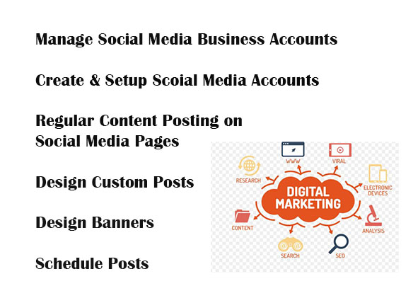 I will manage your social media business pages