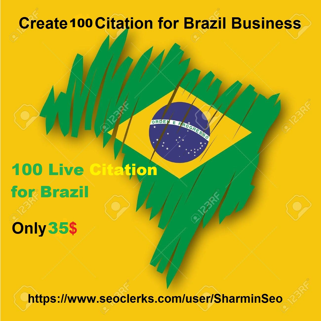 Create 100 live Citation for Brazil Business