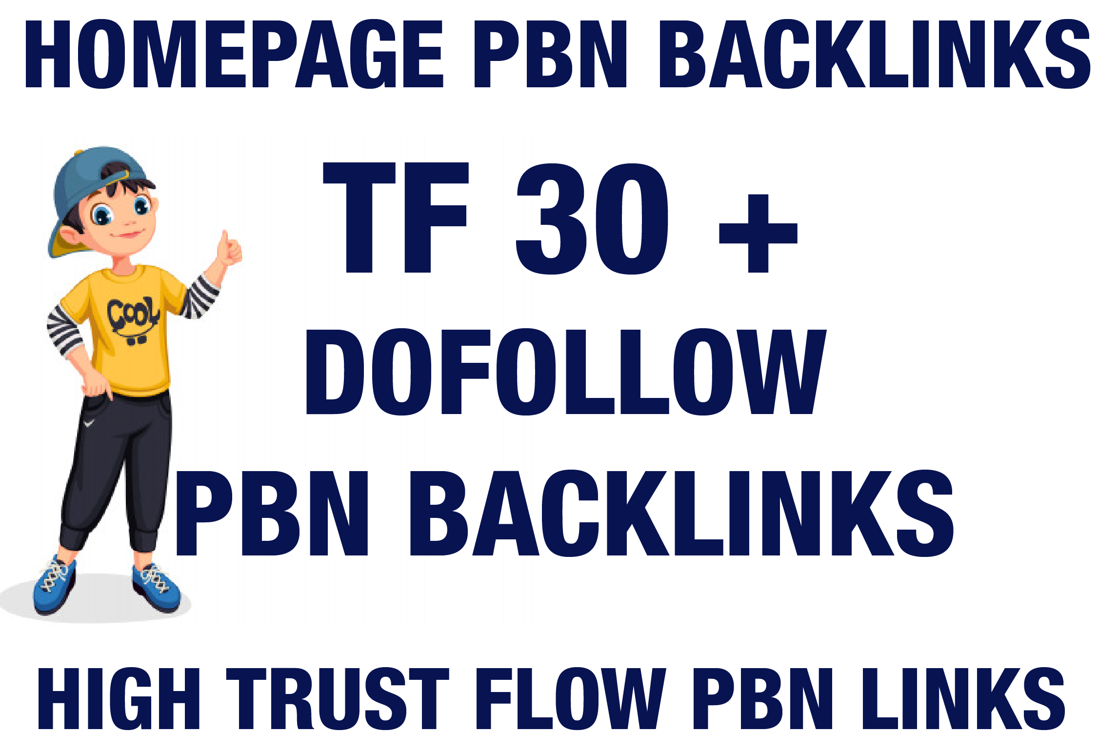 I will Provide 30 Homepage PBN TF 30 Plus PBN Backlinks