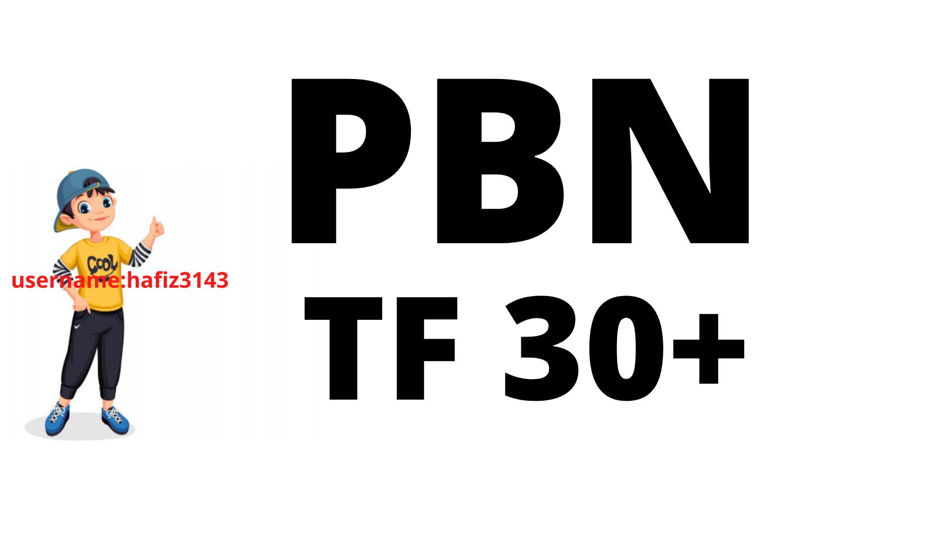 I will Provide Majestic TF 30 Plus 250 PBN Backlinks