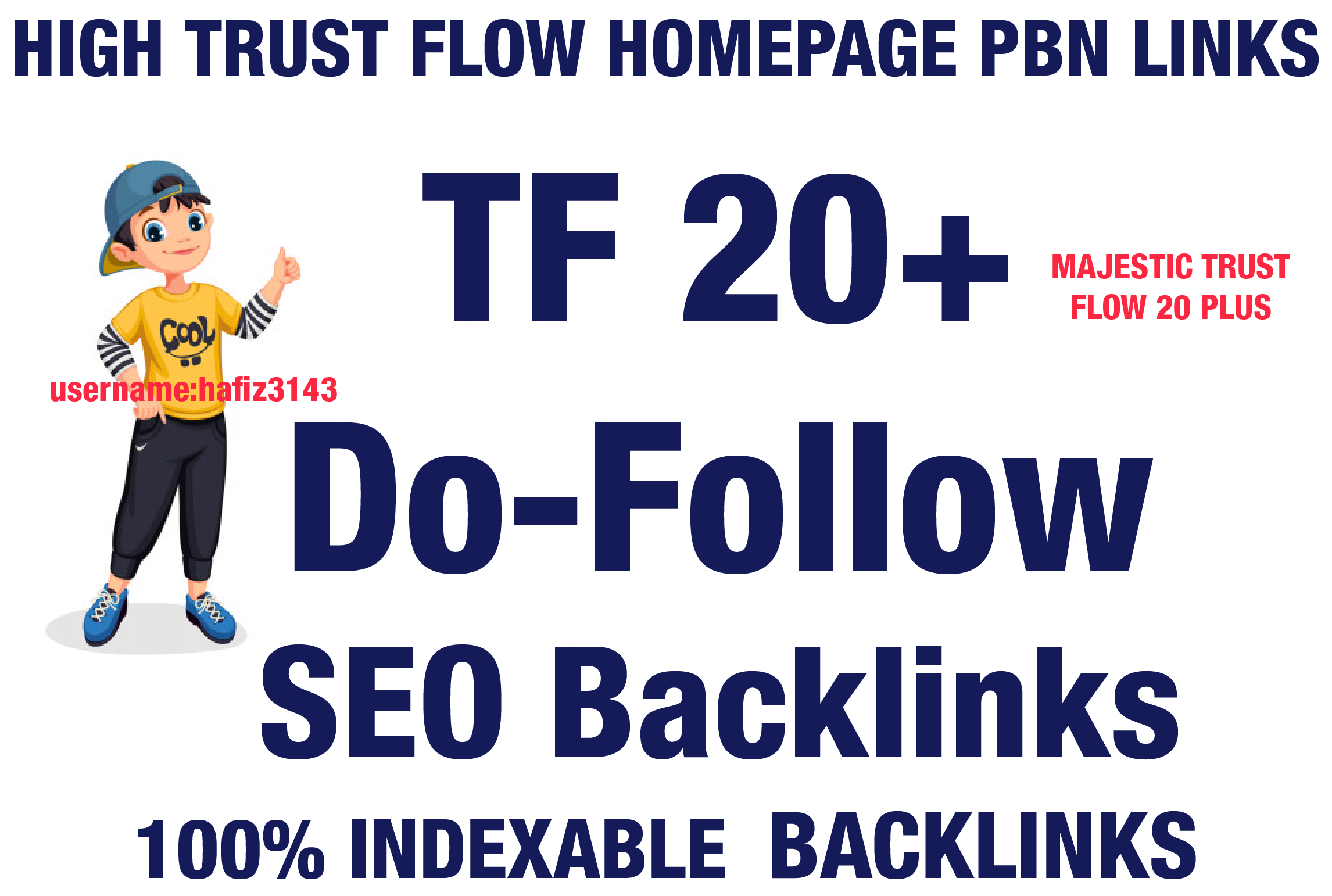 I will Provide TF 20 Plus Dofollow 50 Homepage PBN Backlinks