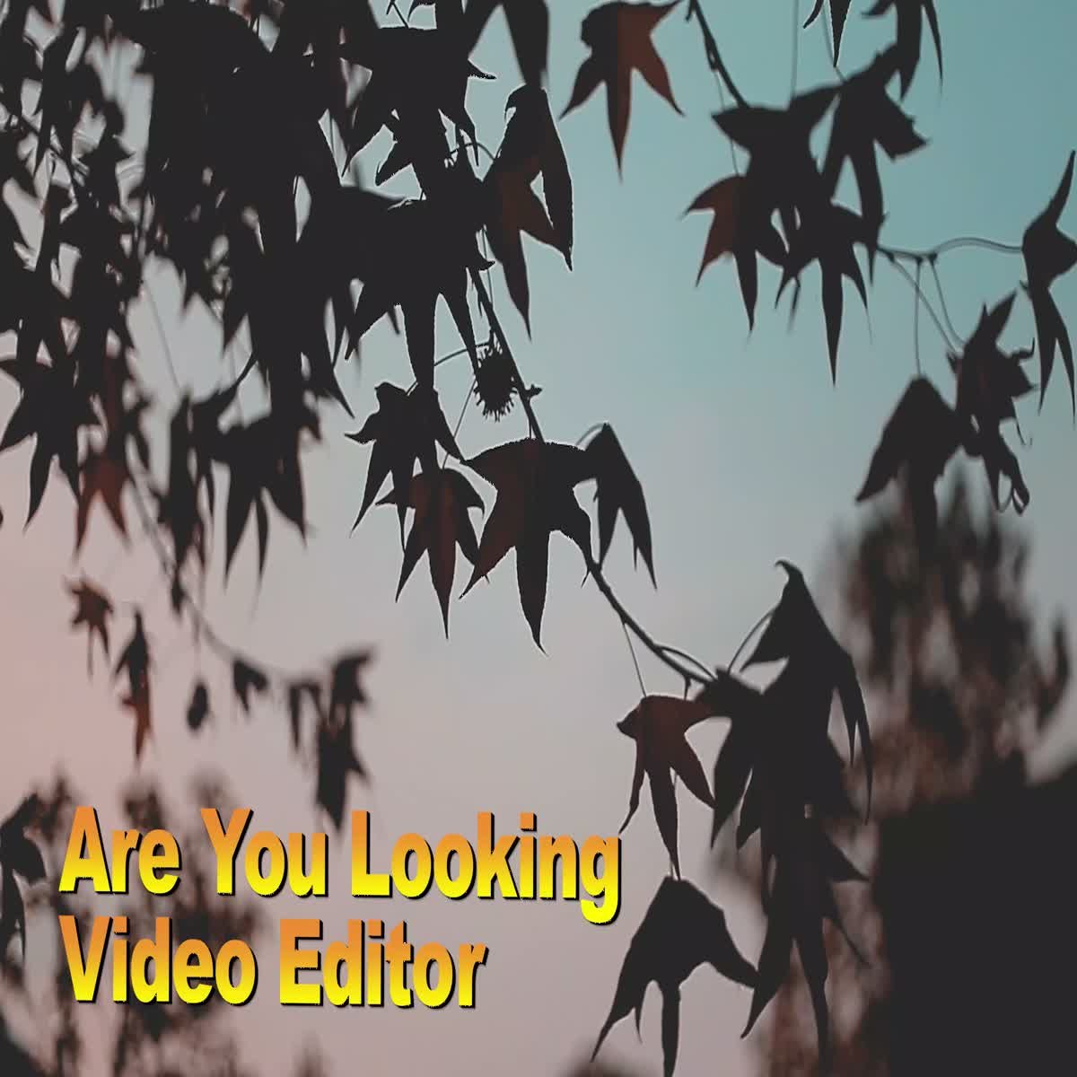Are You Looking YouTube Video Editor do professional video editing For All Kind Of Videos