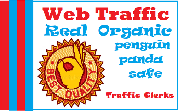 Drive One Thousand Plus Organic Web Traffic to Your Website
