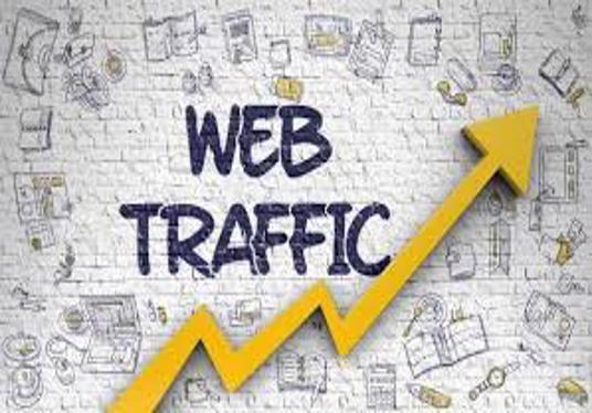 I will drive worldwide based traffic to your website for 1, 10,  20 or 30 days
