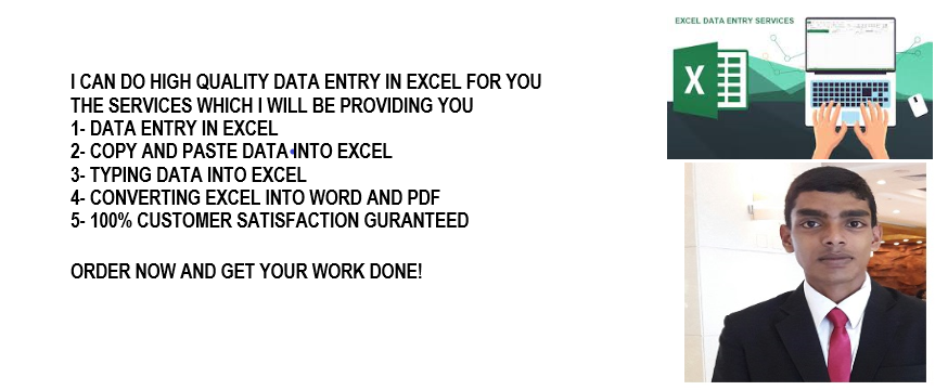 do high quality data entry in MS excel