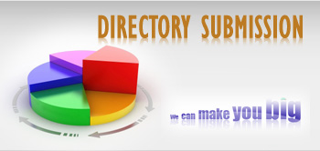 100 Directory submission with in 24 hours.