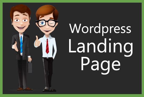 I Will Landing Page On Wordpress