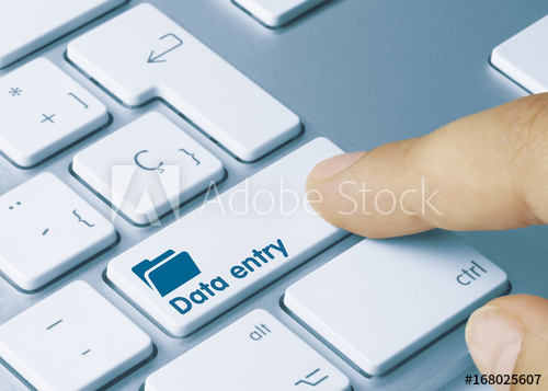 Do data entry job as per your instructions
