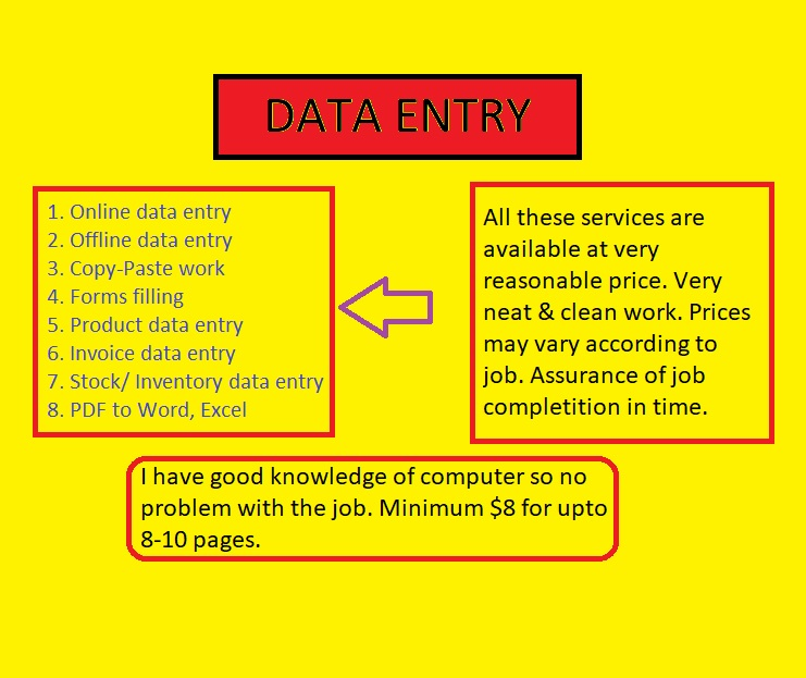 DATA ENTRY WORK Accurate & on time