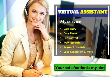 I will do any type of virtual assistant job