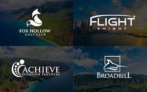 Design Business logo,website logo,